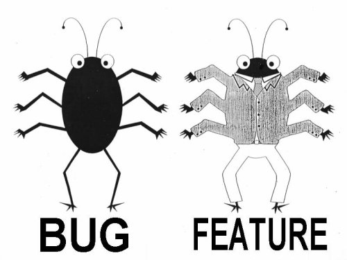 A Bug and a Feature