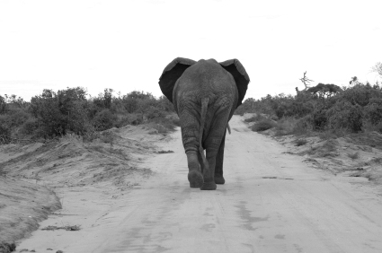 Goodbye Hadoop